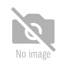 Ray White Port Adelaide